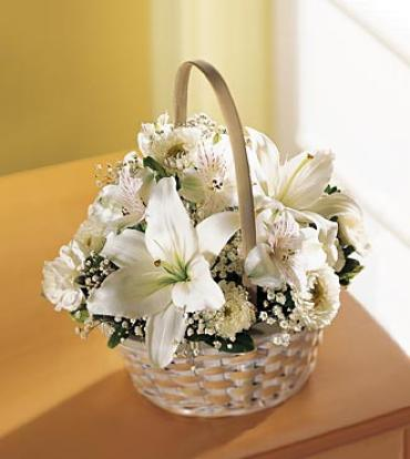 Divine and White Basket