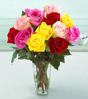 Sweet Mixed Color Rose